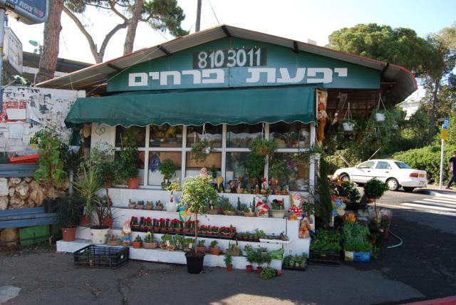יפעת פרחים חנות פרחים ומתנות בחיפה